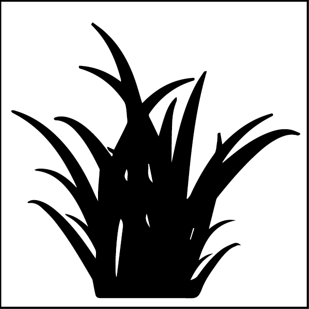 Травянистый
